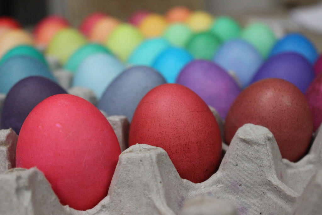Easter Egg Rainbow