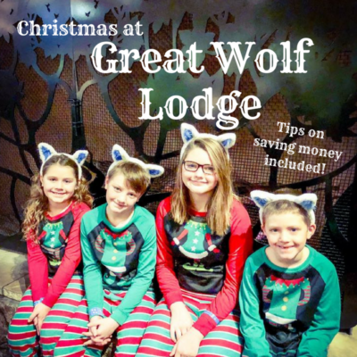 great wolf lodge ears